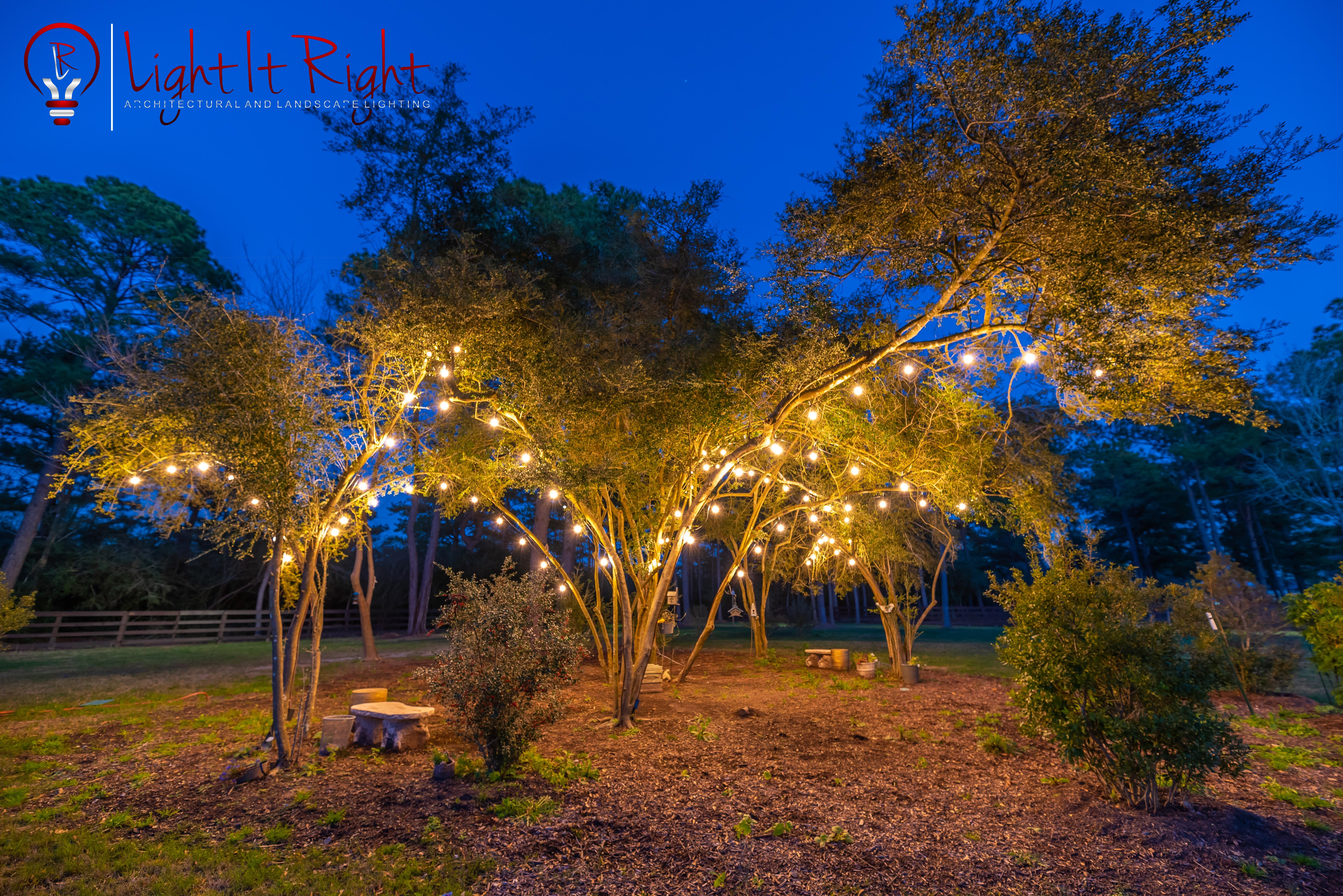 String Tree Lights by Light It Right